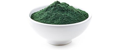 chlorella-rohstoff