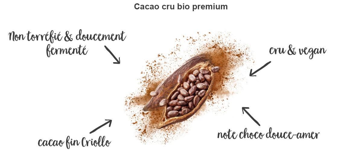 cacao-cru-avantages