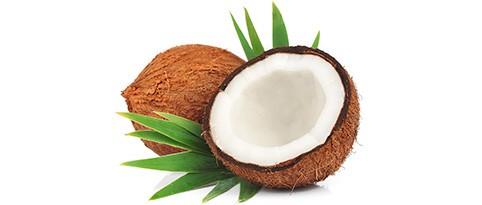 kokosoel-rohstoff