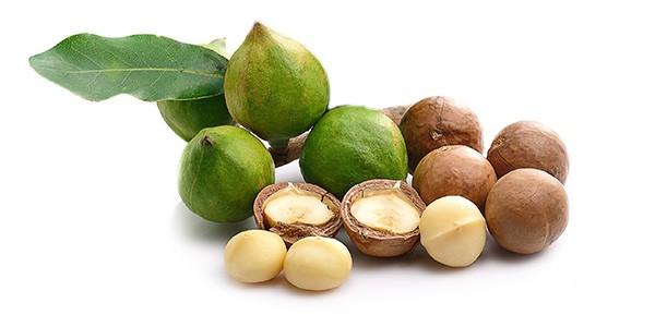 macadamia-rohstoff