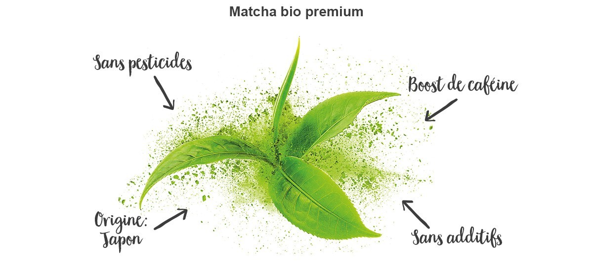 matcha-benefits