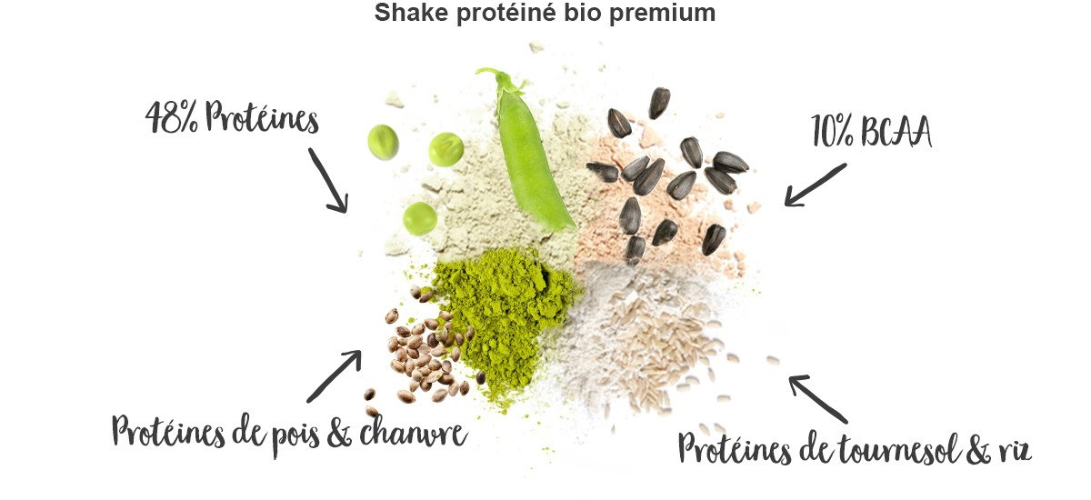 protein-shake-vanille-avantages
