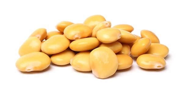 lupinenprotein-rohstoff