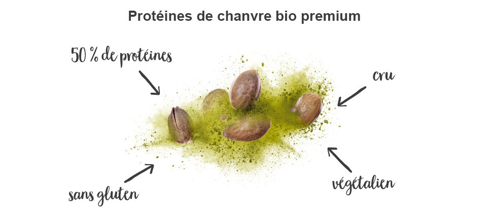 bienfaits-proteine-de-chanvre