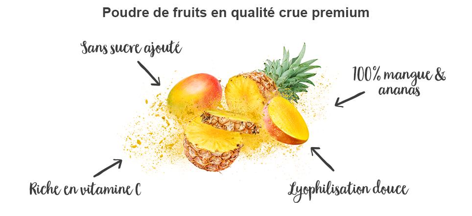 Poudre de fruits pure - bienfaits