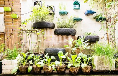 nu3kitchen_urban_gardening_1