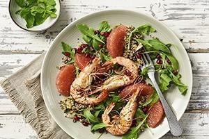 Shrimp auf Quinoa